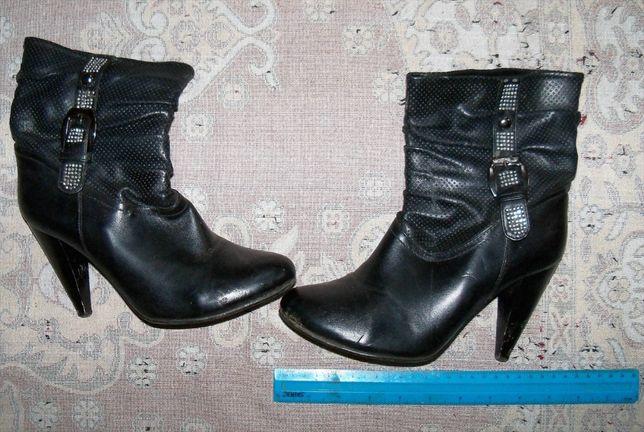 Сапожки жіночі демисезонні ( шкірзамінник)  100 грн. - Жіноче взуття ... 80b512ecaefdd