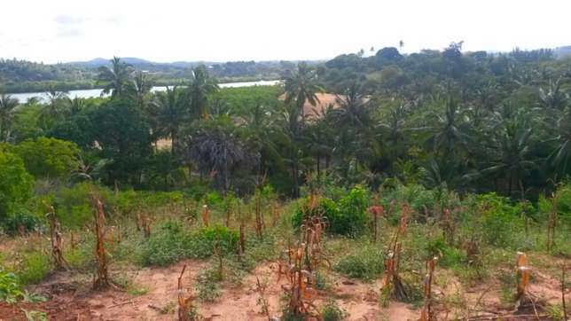Prime Creek View Land Mtwapa - image 3