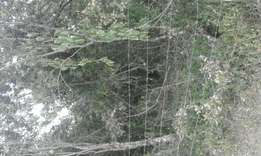 6 acres for sale in nanyuki.fronting timau river