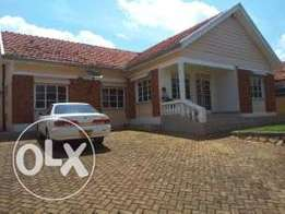 4bedroom executive house for rent in ntinda