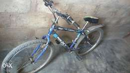 SPORT bicycle with gear