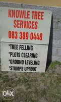 Knowle Tree Services- stumps removal on yard