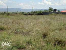 40x80 plot for sale in joska area.700,000 ksh, 500m from the road