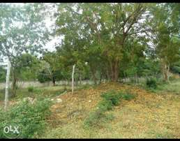 1/4 of an acre In Vipingo 2rd row main rd