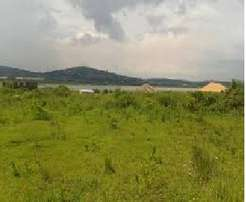 Plots for Sale 50x100 in Ngoingwa with Ready Titles Ksh. 1.6M