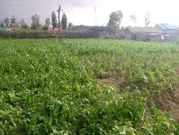 QUICK SALE plot for sale in Nakuru lanet[50by100]
