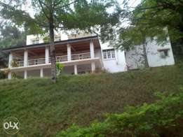 Kololo storeyed house for rent at 7,000usd