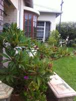 Gardening, Landscaping, Site, Bush Clearing and Grass Cutting