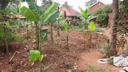GAYAZA land for sale 120m its 100ftby90