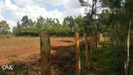 1/4 plots at kapseret