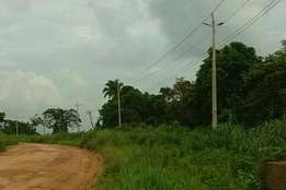 Acres of Land for residential or commercial for sale at Imota