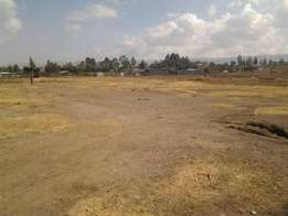 1/4 Acre vacant plot for sale in Ndimu Estate, Lanet