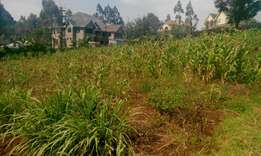 Half acre for sale at Sigona -valley muguga