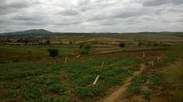 Thika Ngoliba 72 Acres on Tarmac Land for sale Real Estate or Farming