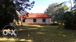 Old Colonial 4 Bedroom bungalow in Karen