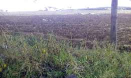 Land for sale in Njoro-350 acres