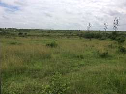 1.5 acres land in Athiriver