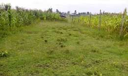 Plot for sale near Mzee Wanyama trading Centre