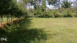 100*100 acre plot in Nanyuki near town at 1.6m
