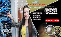 Certified Ethical Hacking (Ceh)Training
