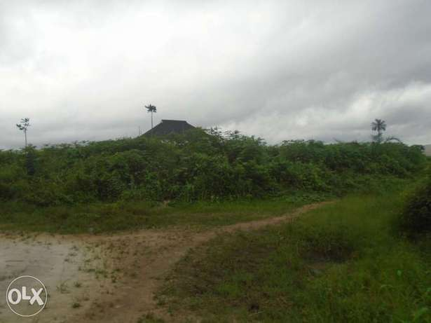 3 & Half plots in Eneka link road, opposite WETLAND learning centre Port-Harcourt - image 2