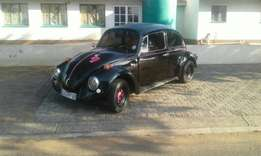 Bargain a lovely beetle 1600 forsale 20.000