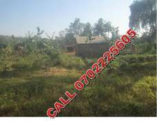 Hot selling 50 by 100ft plot in Mukono-Nimura at 22m