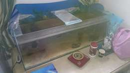 5 ft tank for sale