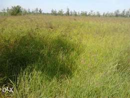 Mombasa rd, Maanzoni, 9acres each at 7m, about 600metres from highwa