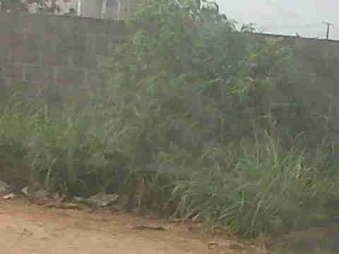 Very Good Half Plot at Ajao Estate Isolo.12m and 15m. Lagos Mainland - image 1