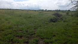 Ideal Plots in Athi Area Juja Farm