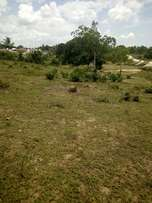 Land for sale at mbagala msongola