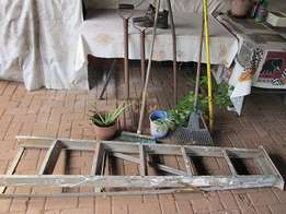 Garden Tools and ladder for sale