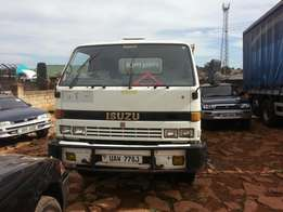 Isuzu tipper UAW on sale