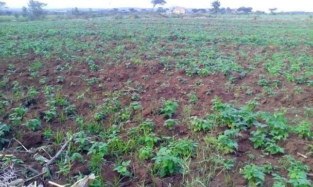 Land for sale in Bahati (6 acres ) Nakuru East - image 5