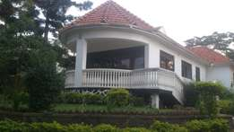 Bukasa luxurious house
