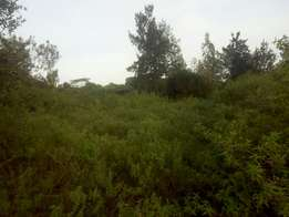 100*100 prime plot for sale in ngong