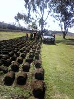 Leon landscapers we deliver and install grass
