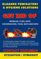 Get Rid of BedBugs for Good