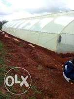 greenhouse construction and management