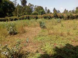 50x100 plot for sale in nderi/zambezi
