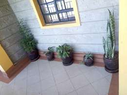 One bedroom apartment for rent in Lower Kabete at Ksh 15,000 p.m
