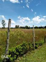 1acre suitable for subdivision at 1.2m