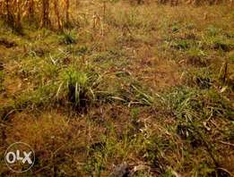 5 acres at RONGAI for farming and residential