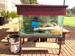 3ft Tank + Stand + Canister + Lid & Decorations