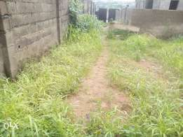 Fenced & Dry Half a Plot of Land at Ajao Estate Isolo. CofO. 12m, 15m