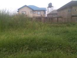 500sqm of land in olowora isheri