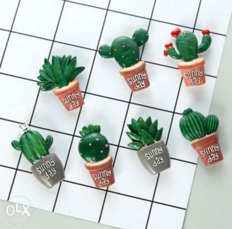 Strong cactus magnet for kitchen or garden last piece 35 alf