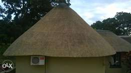 Thatch roofs specialist