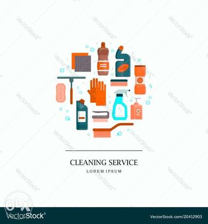 Profesional cleaning staff